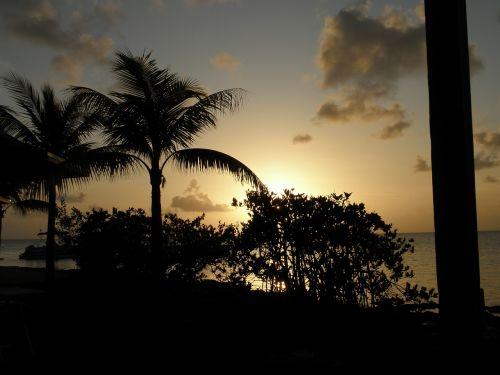 sunset romance tropics