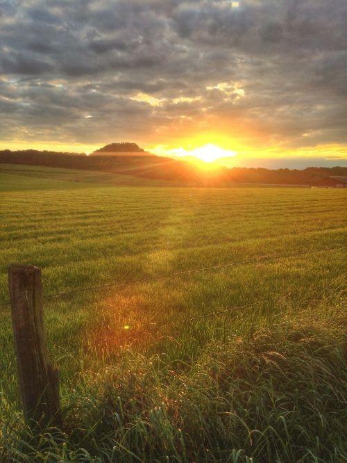 sunset fields late summer