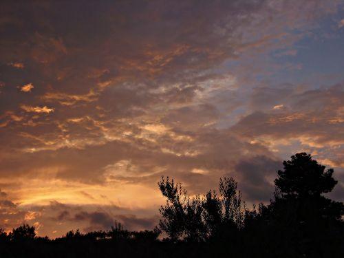 sunset violet tones landscape