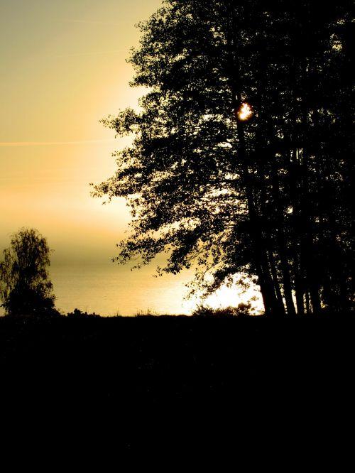 sunset autumn mist mist