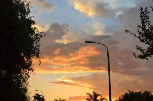 sunset suburb trees