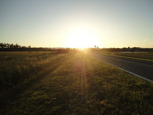 sunset wetland natural