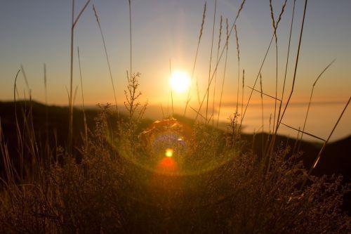 sunset sunrays sunlight