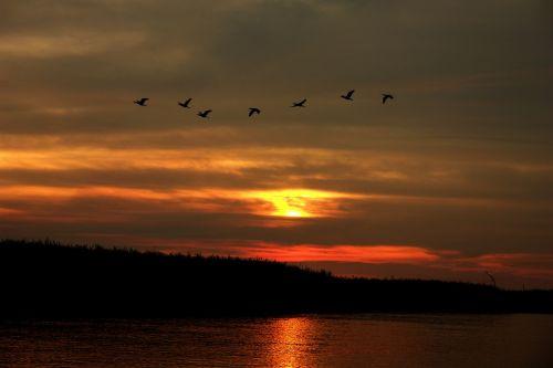 sunset aterdecer river