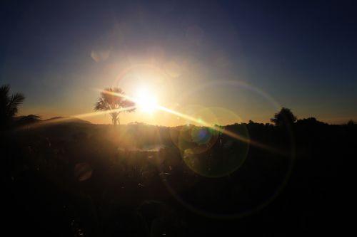 Sunset Flares