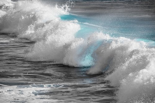 surf  water  wave