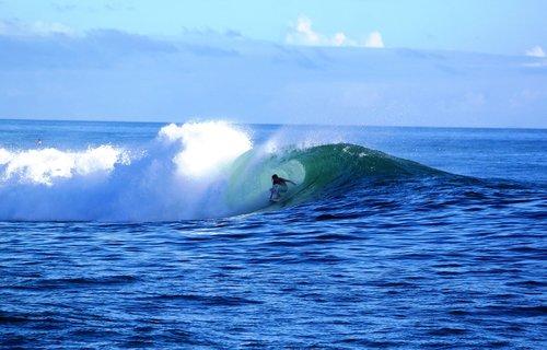 surf  waikiki  hawaii