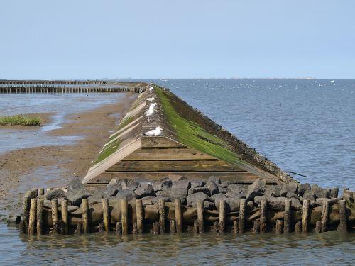 surf wall north sea wadden sea