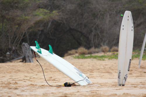 surfboard maui beach