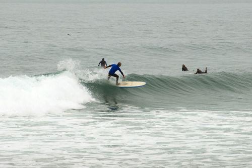 surfing beach surf surf