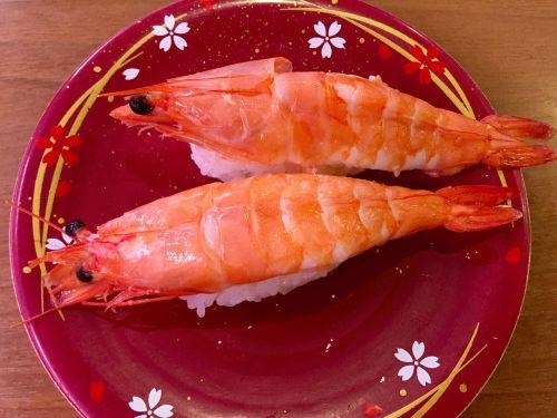sushi japanese cuisine japanese