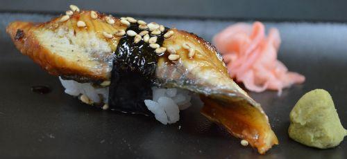 sushi eel japanese food