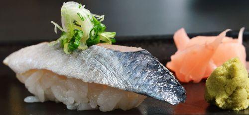 sushi sardine japanese food