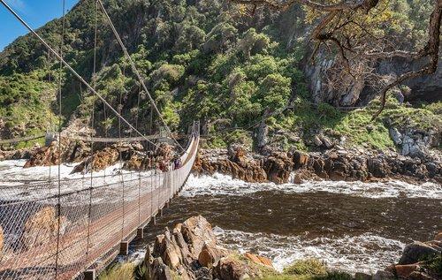 suspension bridge  mouth  bridge