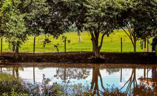sustainability poetry landscape