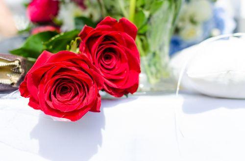 svatba růže červenými
