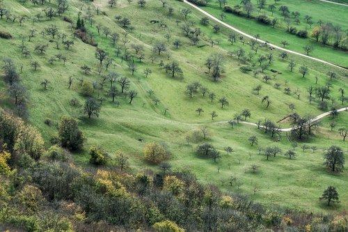 swabian alb  landscape  alb