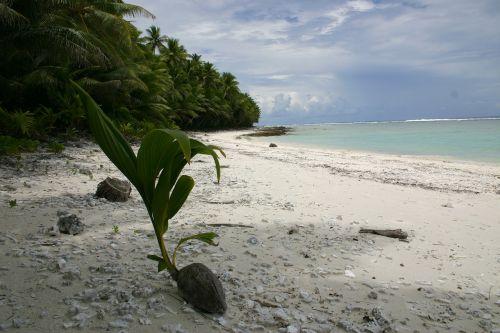 swains island american samoa sea