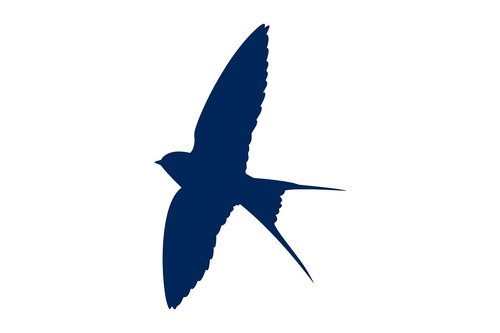 swallows  bird  silhouette