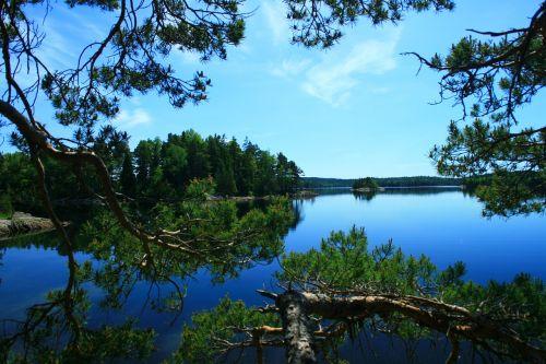 sweden waters loneliness