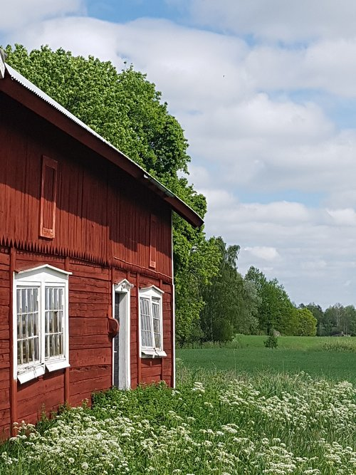 sweden  barn  summer