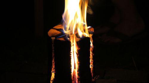 sweden fire fire burning tree trunk