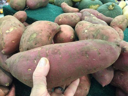 sweet potato vegetable