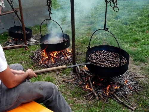 sweet chestnuts maroni campfire