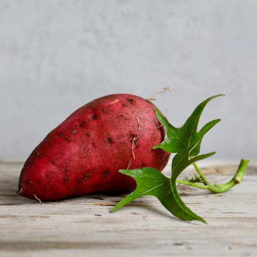 sweet potato food vegetable