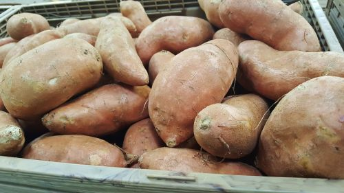 sweet potatoes potatoes food