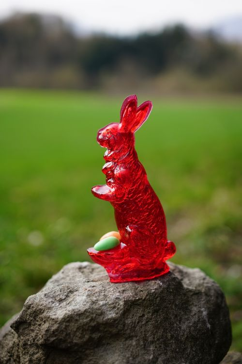 sweetness easter bunny sugar bunny