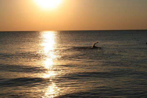 swimmer baltic sea water