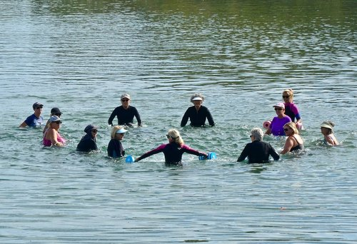 swimmers  exercise  elderly