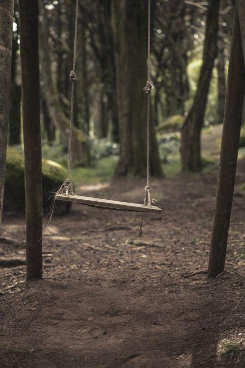 sūpynės,miškai,gamta,lauke,miškas,lauke,medis,parkas