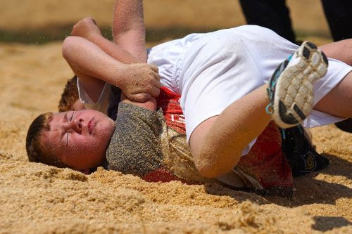 swing wrestle sawdust