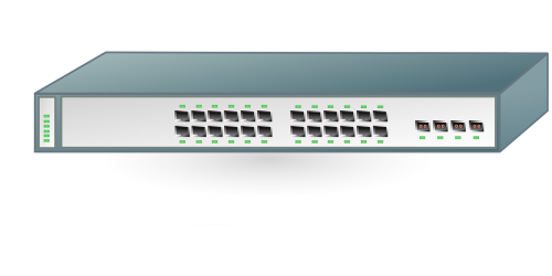 switch port network