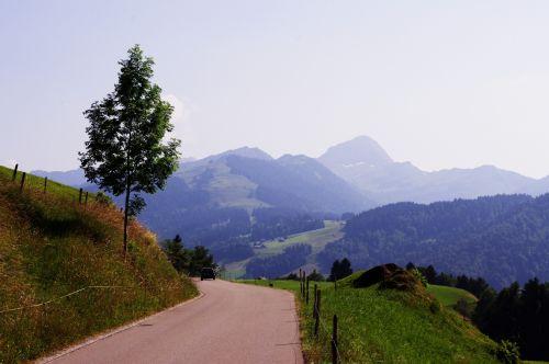 Šveicarija, swiss, kalnai, peizažas, vasara, medis, kelias, Šveicarijos peizažas