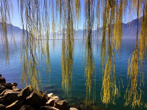switzerland lake geneva montreux