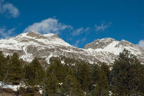 Šveicarija,kraštovaizdis,kalnai,sniegas,ledas,dangus,debesys,vaizdingas,miškas,medžiai,miškai,žiema,gamta,lauke,Šalis,kaimas