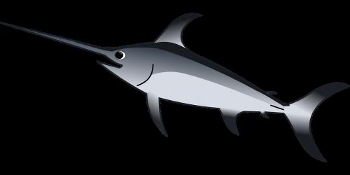 swordfish predator sea