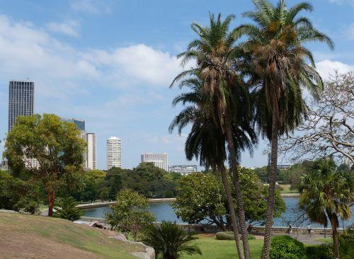 sydney australia botanical garden