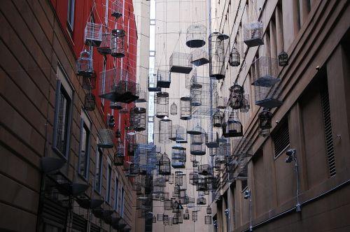 sydney birdcage installation