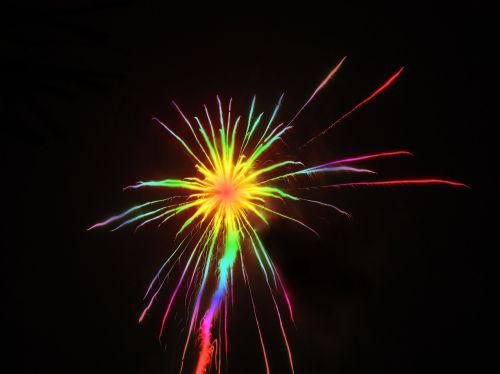 sylvester rocket colorful