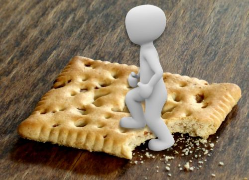 symbolic go on the biscuit figure of speech