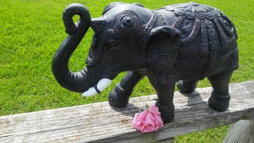symbolic elephant pink rose