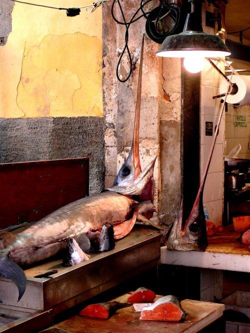syracuse traditional fishing swordfish