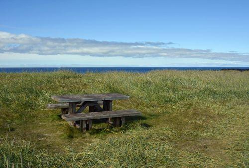 table bank picnic table