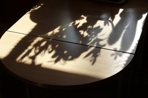 stalas,šešėlis,ispaniškas,augalas