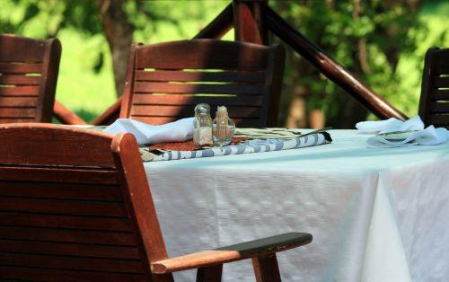 stalas, nustatyti, kėdės, tema, safari, staliukas, skirtas safari pietums