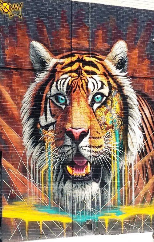 žymes,tigras,grafika